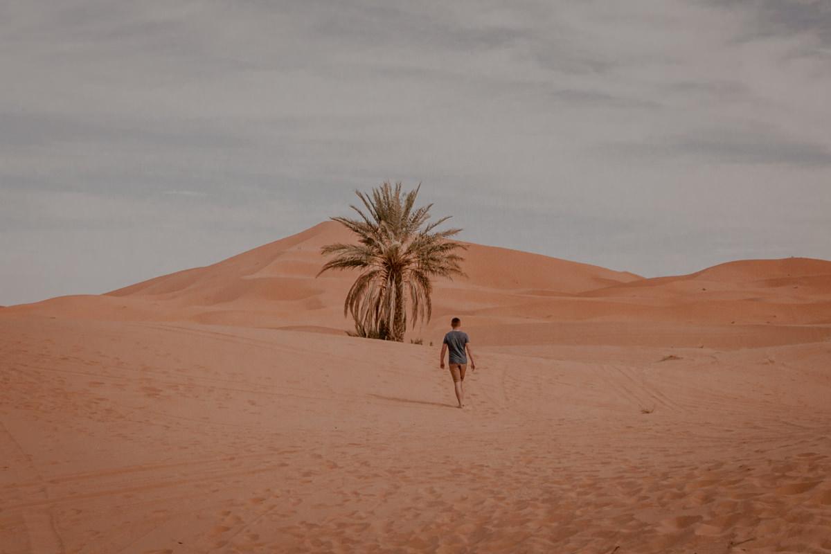 Maroko - bezpieczeństwo, Sahara Zachodnia