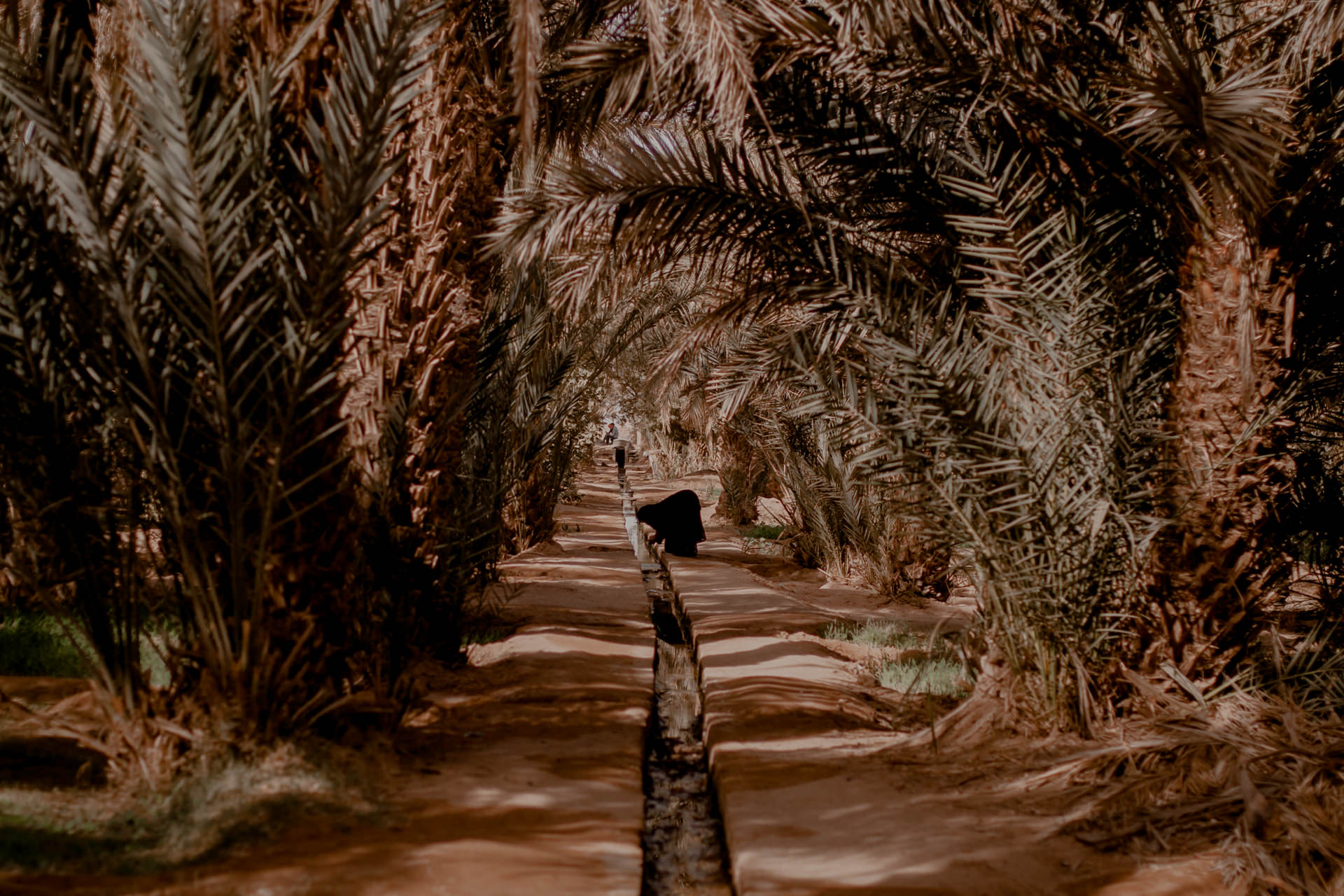 Oaza w Maroku - Hassilabied