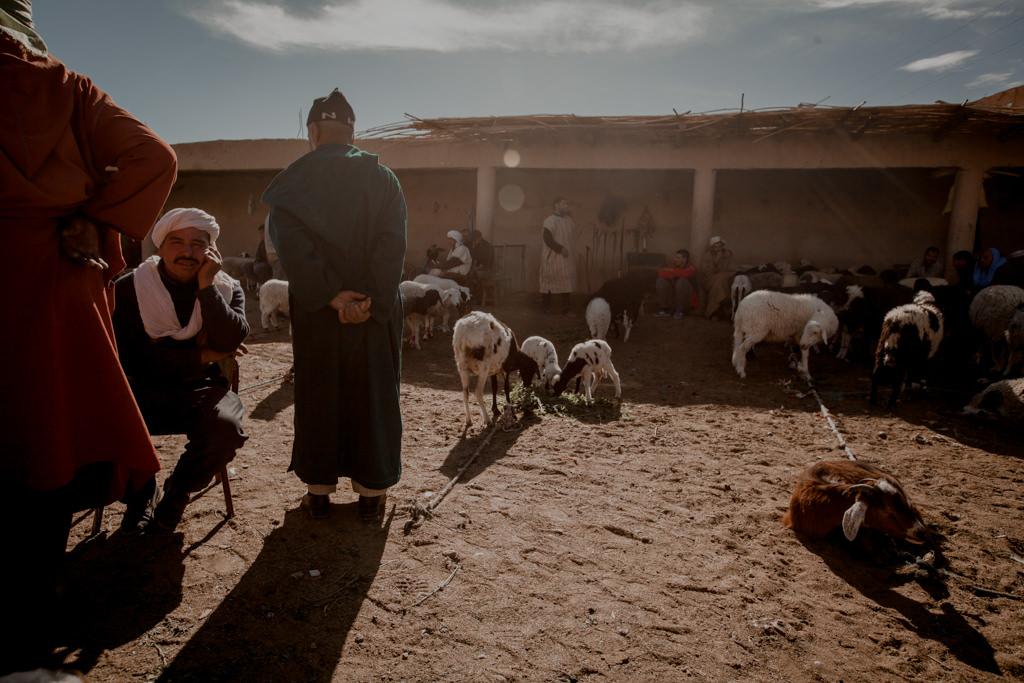 Targi w Maroku