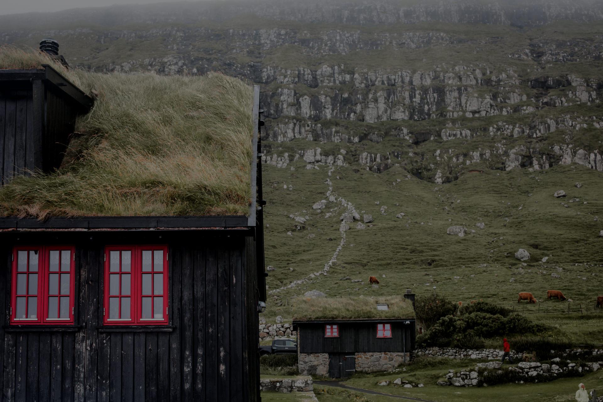 Wyspy Owcze - dach z trawa