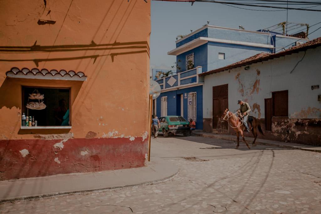 Trinidad - konie