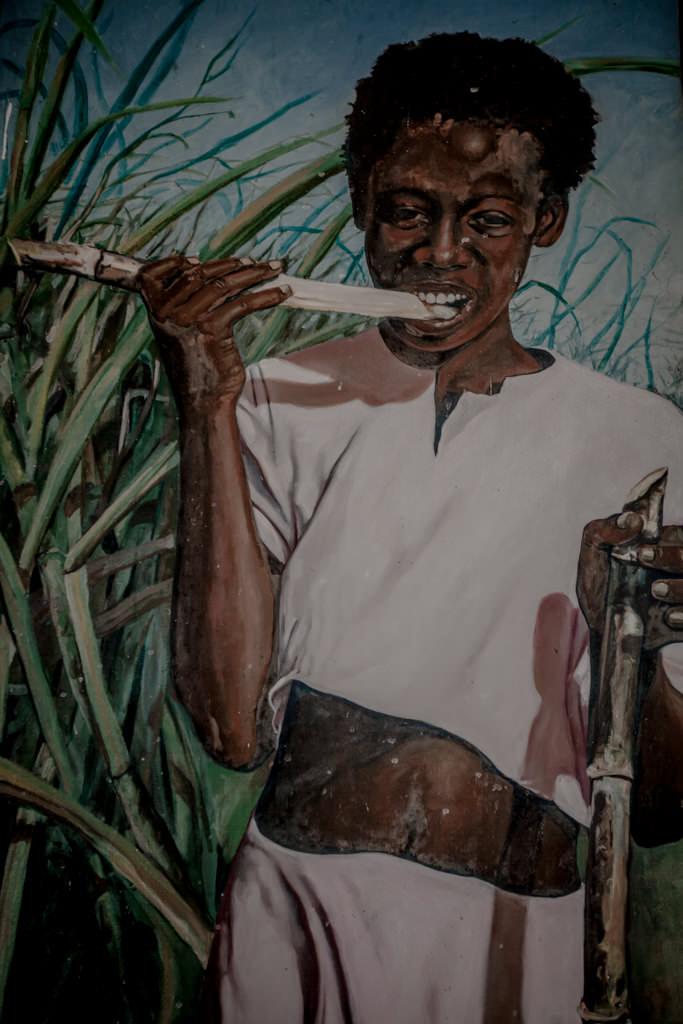 Niewolnicy w Trinidadzie na plantacjach trzciny