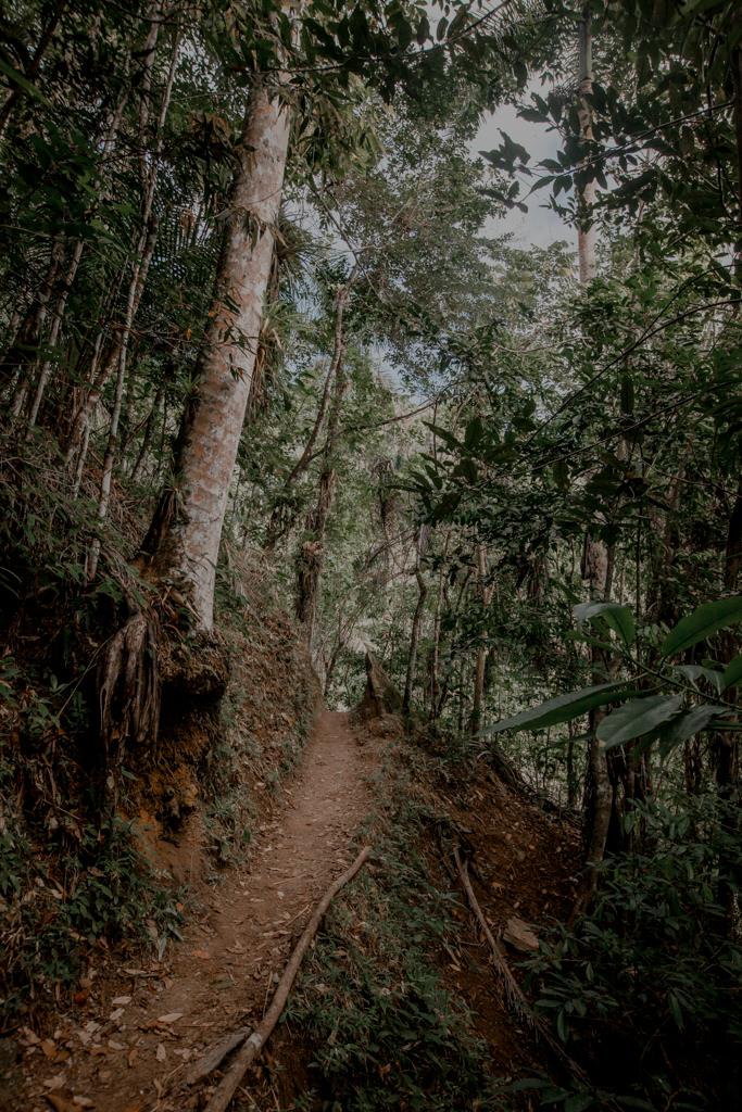 Trekking nad wodospad Trinidad