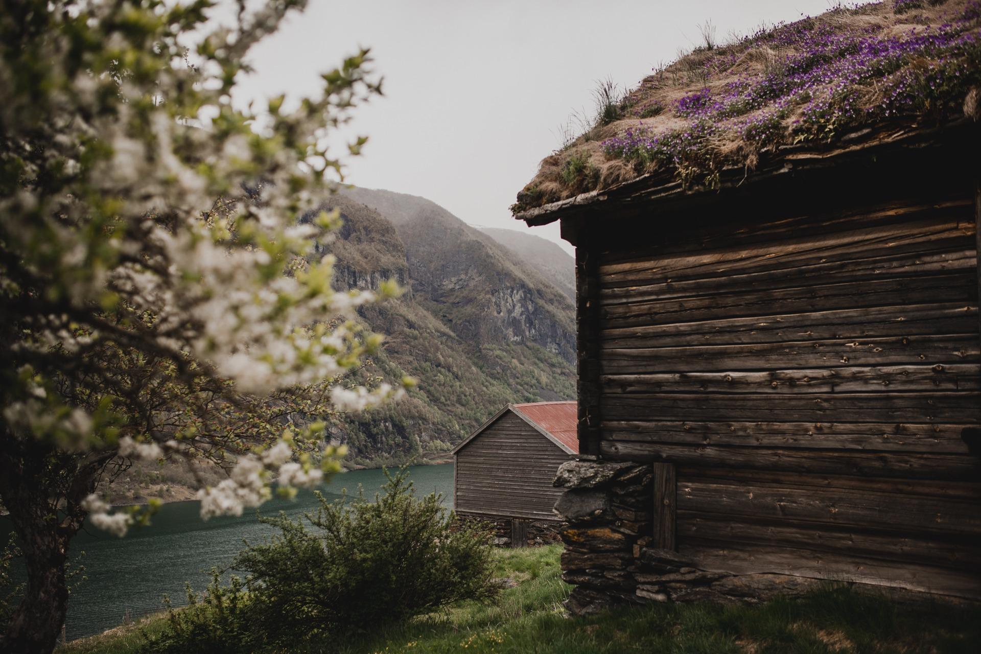 Otternes, Norwegia, Flam, Naroyfjord