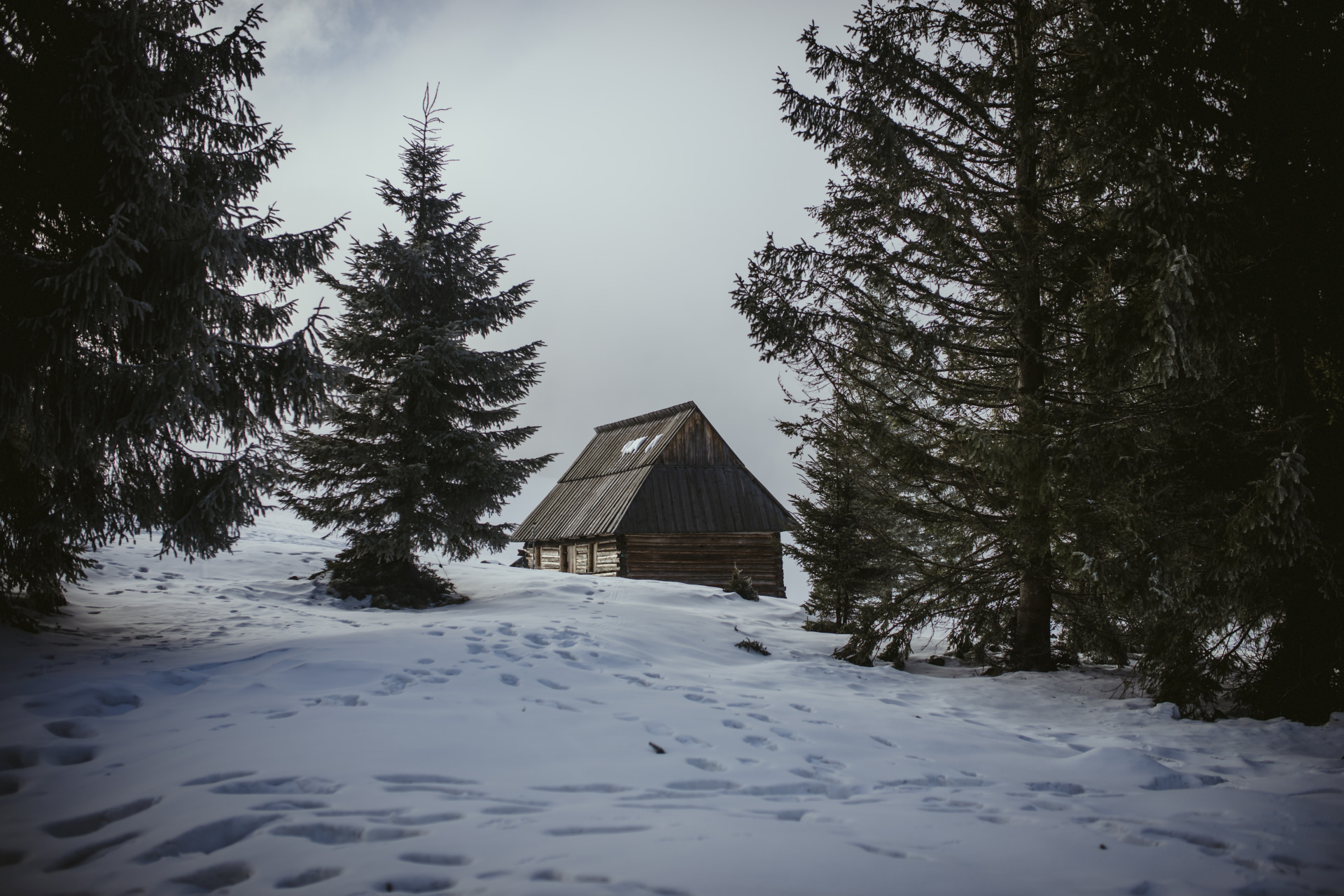 Polana Rusinowa w Tatrach