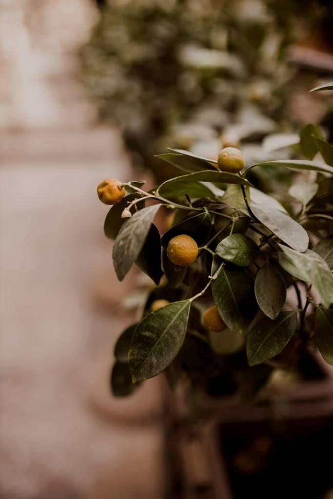 Włochy, Sycylia. Taormina i jej atrakcje