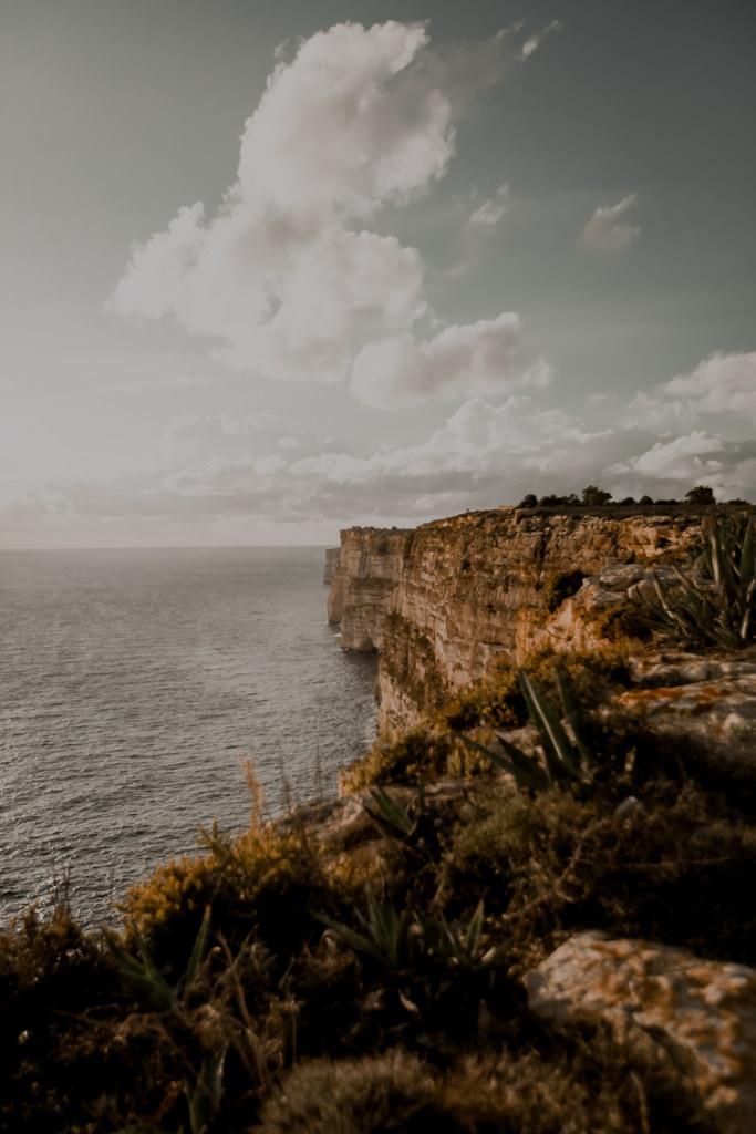Malta polowania na ptaki