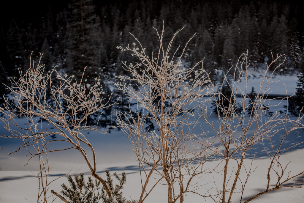 Weekend w górach. Zima w Tatrach nad Morskim Okiem